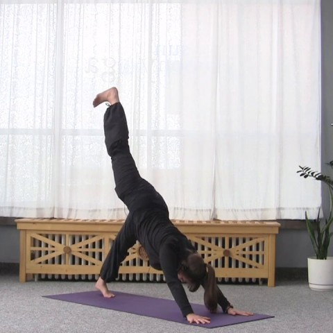 From Downward Dog into Warrior Lunges