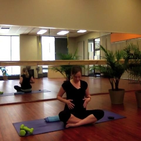 Prenatal Yogalates, Level 2