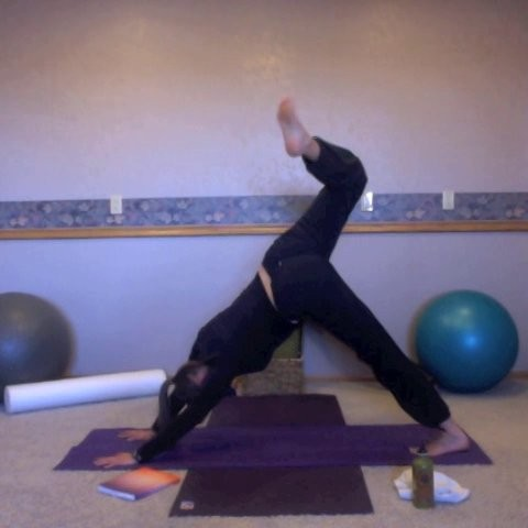 Yogalates: Set 1, Level 3+