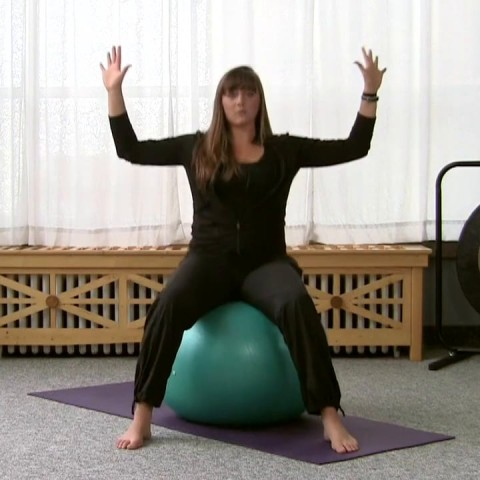 Bouncing and Jumping Jacks on a Stability Ball